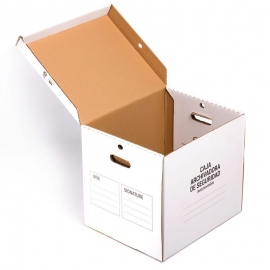 Filing Box (46x37x40 cms) Security Locks Included. Big